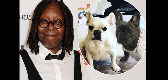 Insolite: Whoopi Goldberg annonce le mariage de son petit-chien (photos)
