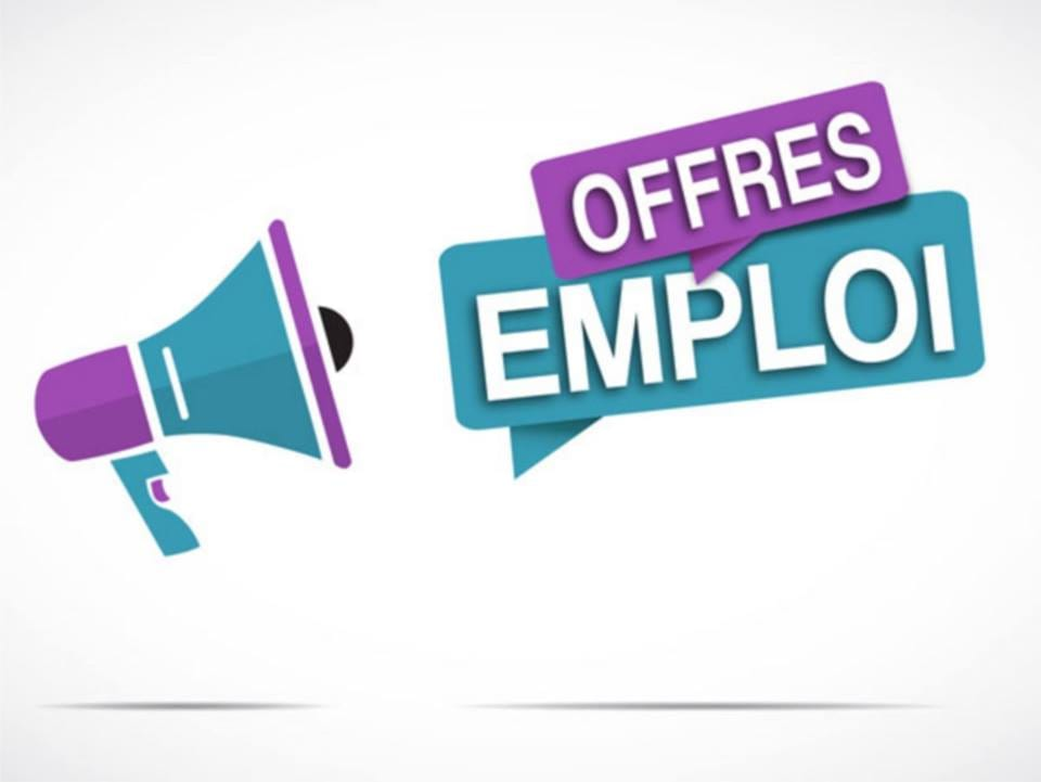 Orange recrute 01 Chef des Ventes