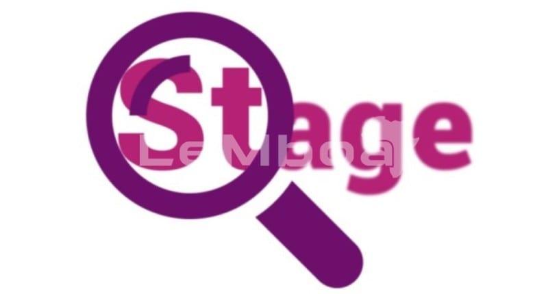 Stage Pre-Emploi Catégorie Manager Junoir (H/F)