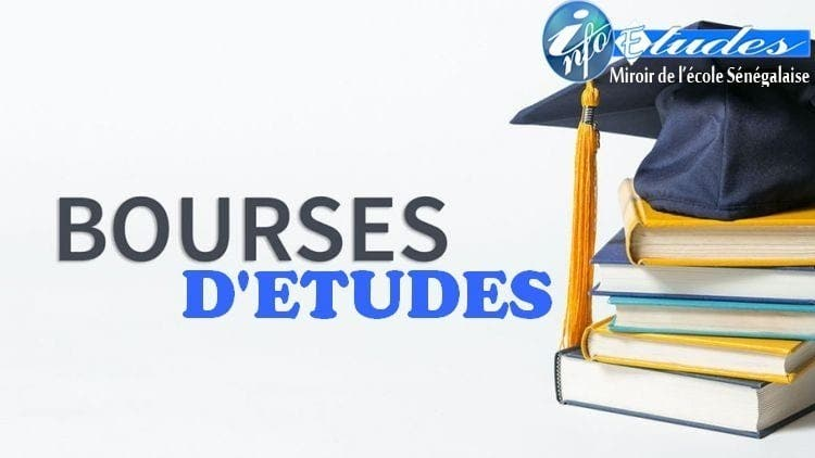 Bourses de master et doctorat de l'Université des Nations Unies
