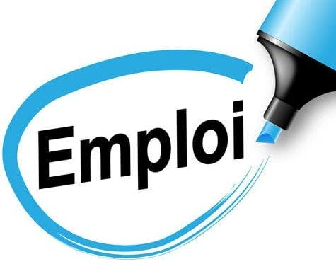 Promediation recrute 01 Assistant de programme