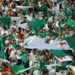 Can 2019, 28 Avions,transporter,fans Algériens, Égypte