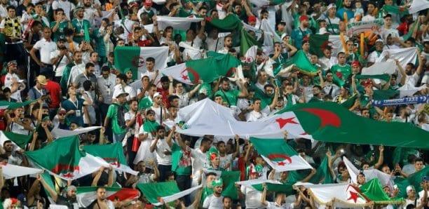 CAN 2019: 28 avions pour transporter les fans algériens en Égypte