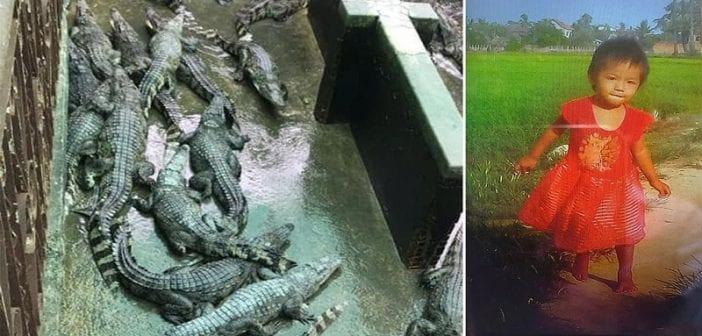 Cambodge: Une fillette de deux ans tombe dans une fosse aux crocodiles