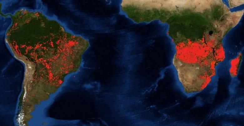 Les forêts brûlent bien plus en Afrique qu'en Amazonie