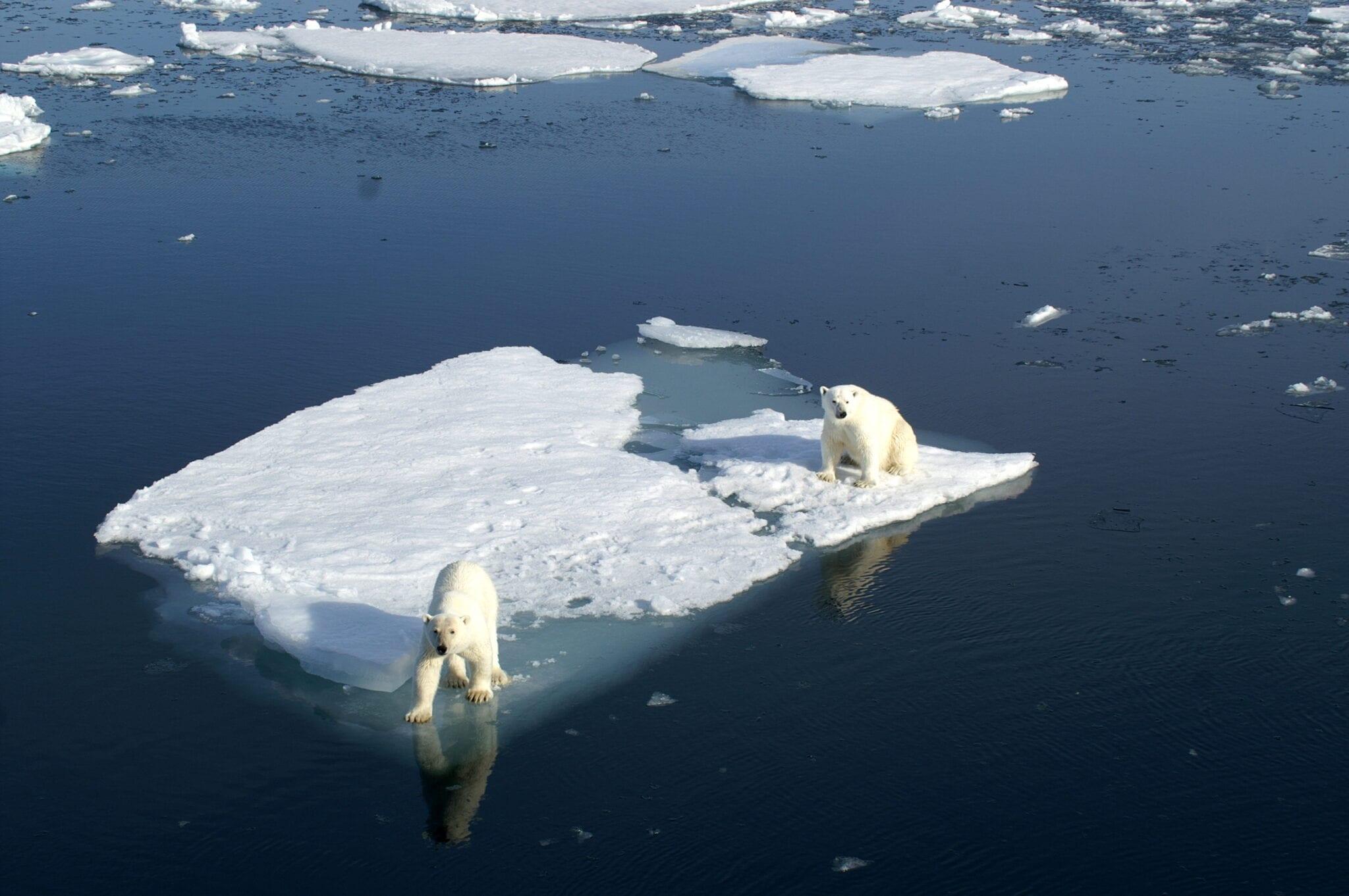 Bill Gates propose une idée hors du commun contre le réchauffement climatique