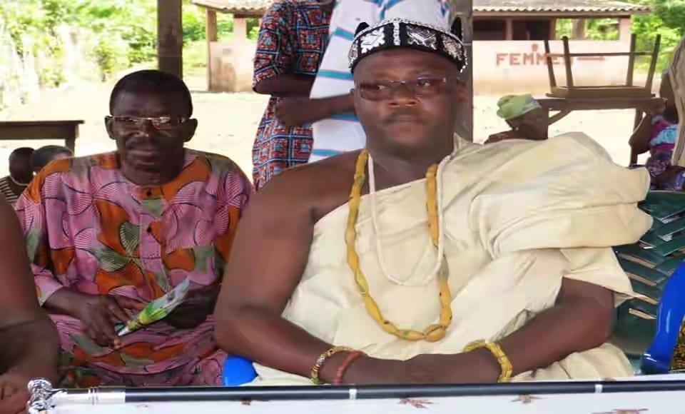 Togo : Le roi Mlapa interdit la vente des terres cultivables