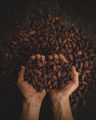 Santé : six précieux bienfaits du café