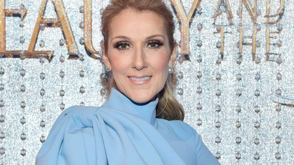Céline Dion vivement critiquée sur son physique dans TPMP !