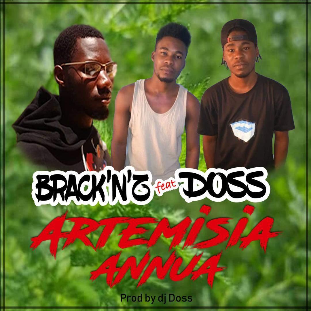 Brack'N'Z et Doss chantent pour l'Artemisia Annua, une plante contre le paludisme