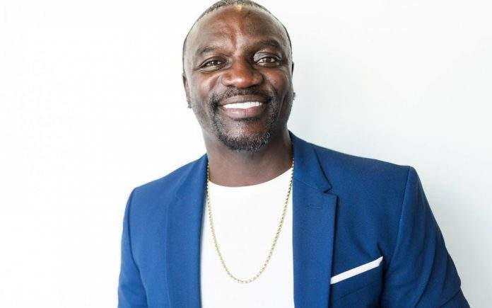 Les maquettes de la ville construite par Akon au Sénégal ont fuité