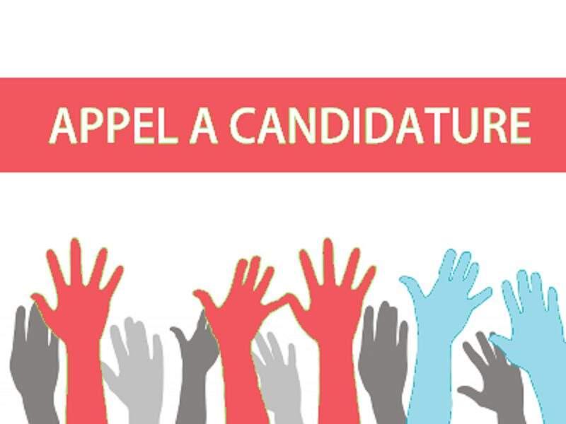 Appel a candidature: Programme présidentiel des jeunes diplomés PRO-PAEJ