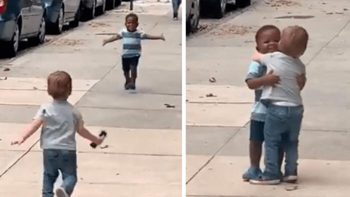 """À 2 ans, ils donnent l'image de la """"vraie"""" amitié-Vidéo"""