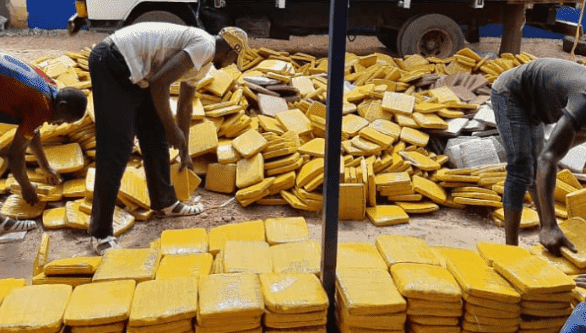Trafic : 3,5 tonnes de cannabis saisies en Côte d'Ivoire