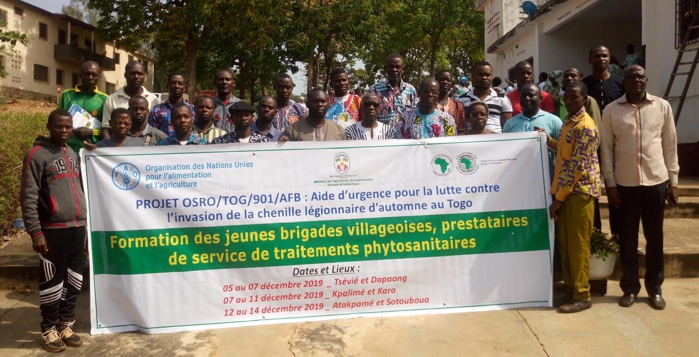 Formation de jeunes brigades villageoises prestataires de service de traitements phytosanitaires