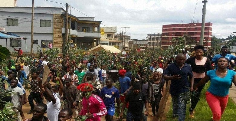 """Cameroun: l'opposition parle d'un """"pseudo"""" statut spécial accordé aux régions anglophones"""