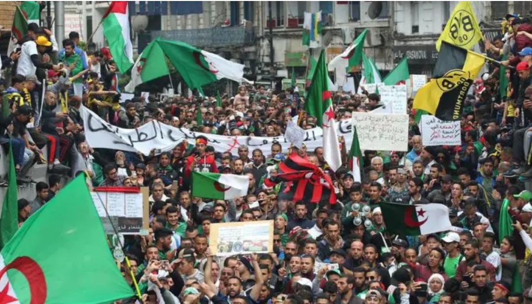 Réaction des Algériens après la victoire d'Abdelmadjid Tebboune à la présidentielle