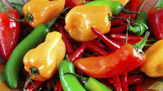 Santé: la consommation régulière du piment réduit les risques d'infarctus et d'AVC-Etude