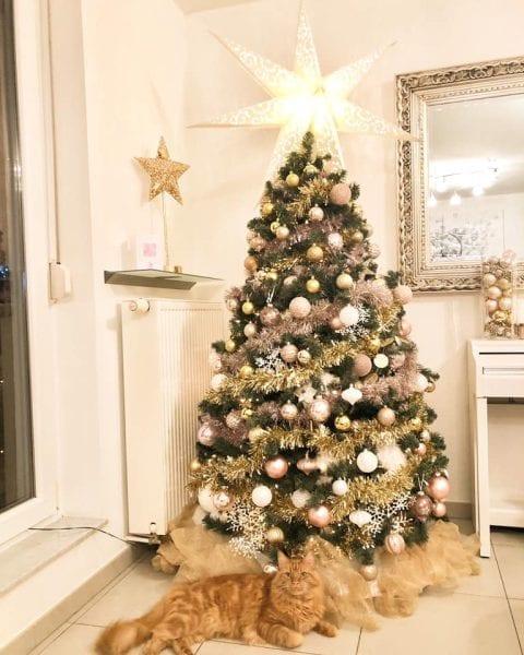 Vos plus beaux sapins de Noël en images