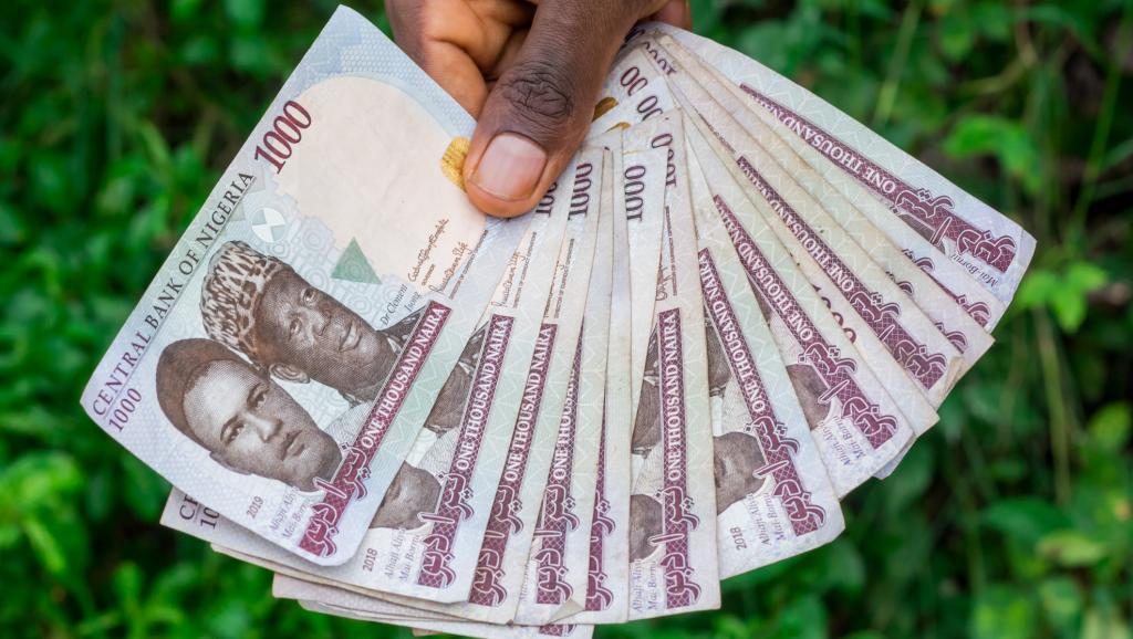 Ce que les pays anglophones d'Afrique ont réellement dit du rejet de l'Eco