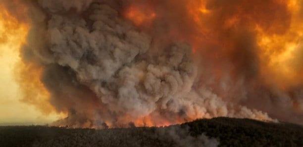 L'Australie s'intoxique avec les fumées de feux de forêts géants