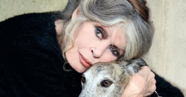 Pour Brigitte Bardot, Emmanuel Macron n'a aucune humanité