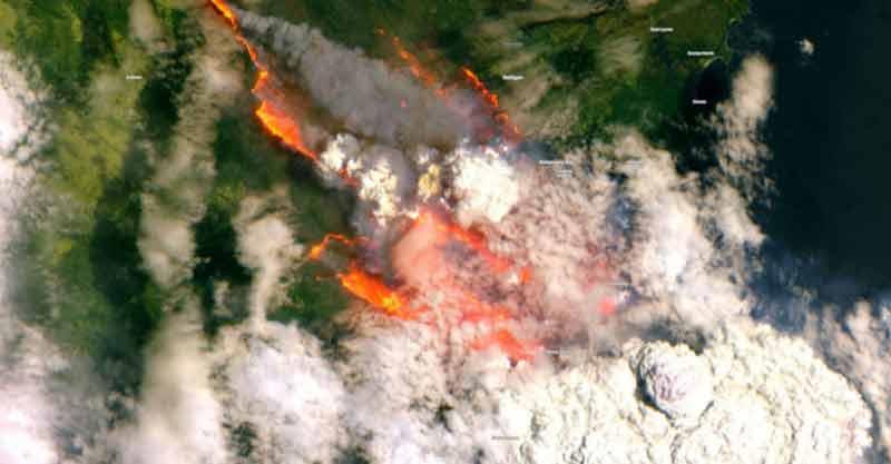La situation des incendies en Australie est «apocalyptique» (ONG)