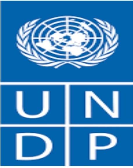 MALI:PNUD recrute 01 Expert national état de droit