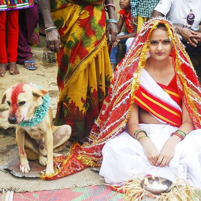 Une jeune indienne de 18 ans épouse un chien