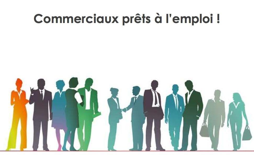 Recrutement De Commerciaux Grands Comptes/Key Account Commercial