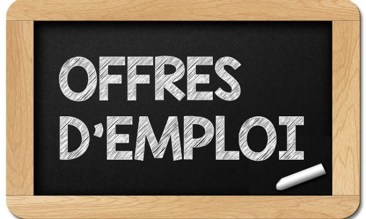 GAUFF recrute 01 Chef de mission adjoint