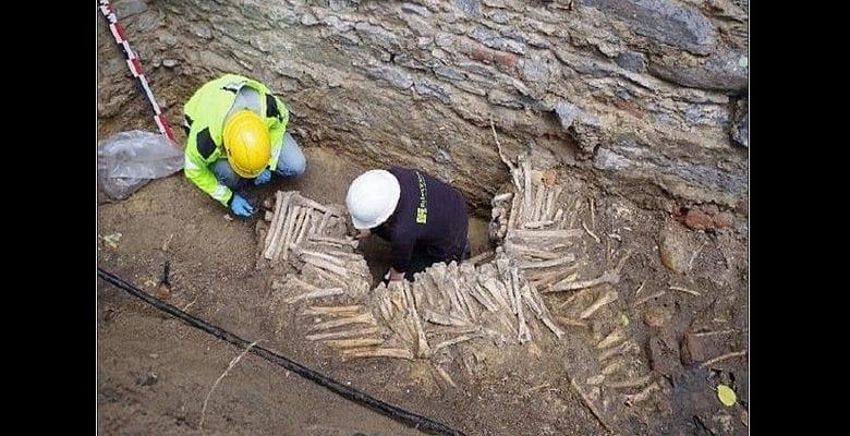 Belgique : des murs construits d'os humains et de crânes découverts sous une cathédrale