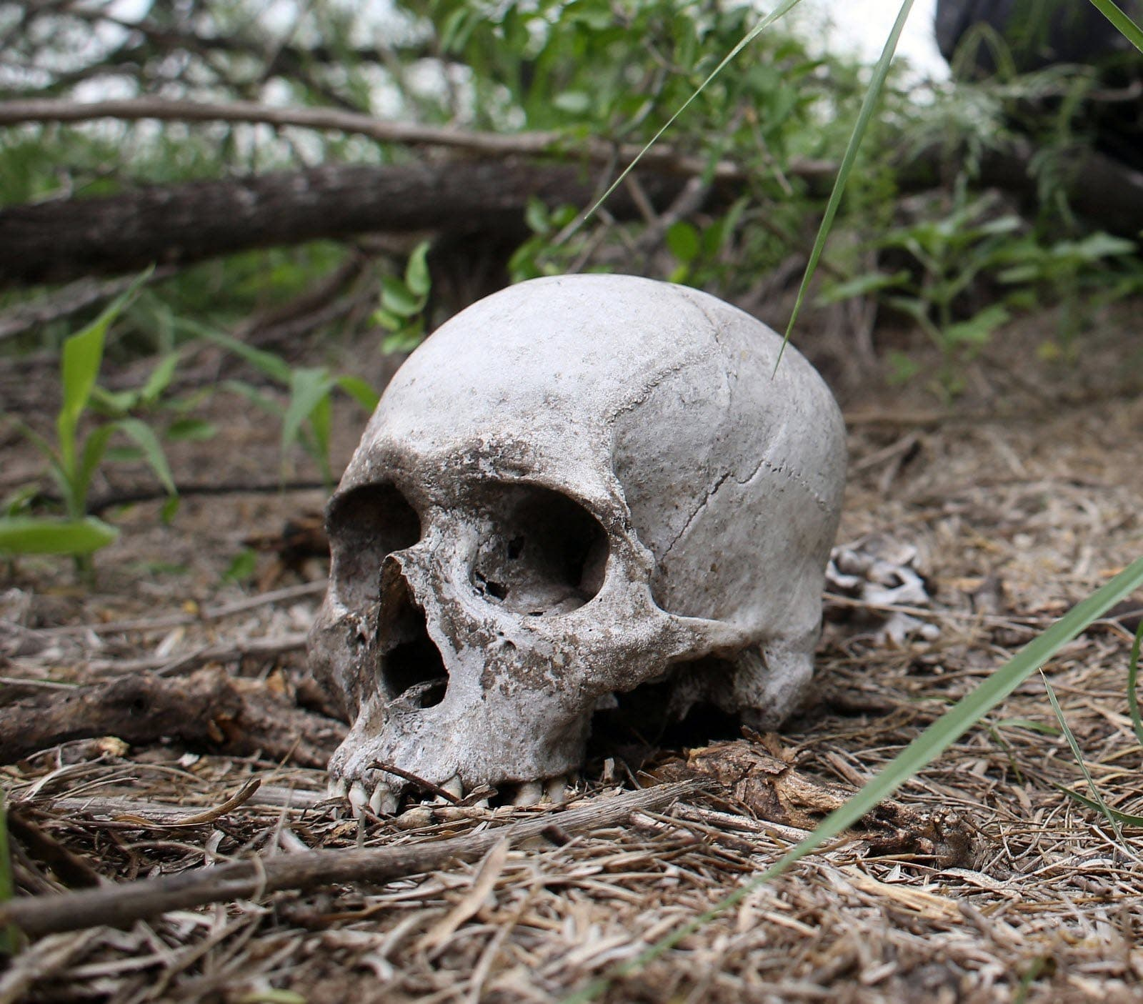 Des ossements humains dont un crâne découverts sous un magasin à Adjamé.