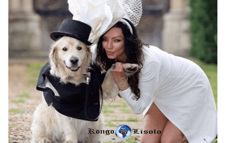 Norvège : le mariage entre humains et animaux légalisé