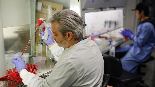 Brésil : découverte du Yaravirus, un virus inoffensif pour l'homme