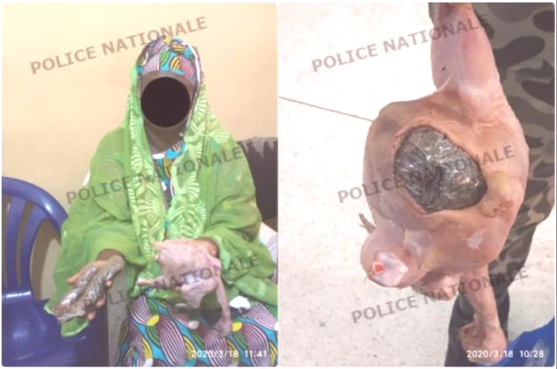 Côte d'Ivoire : Elle essaie de faire entrer la drogue  dans l'anus d'une poule