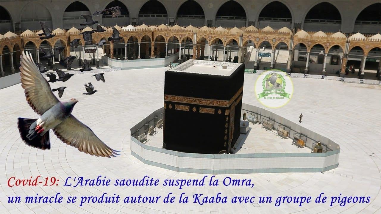 La Omra suspendue : Un miracle se produit autour de la maison de Dieu à la Mecque (Vidéo)