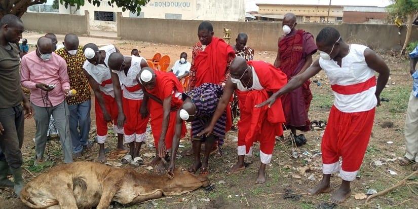 Bondoukou : une cérémonie rituelle des féticheurs pour arrêter Coronavirus