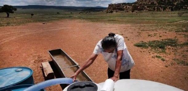 Coronavirus aux États-Unis: les Amérindiens Navajo, deuxième population la plus touchée