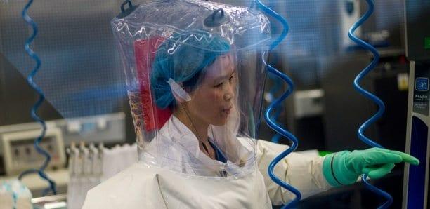 """La virologue qui a identifié le coronavirus prévient : """"Ce n'est que la partie émergée de l'iceberg"""""""