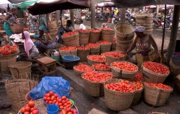 Togo : Une revendeuse de tomates révèle comment elle a été malmenée par la Police