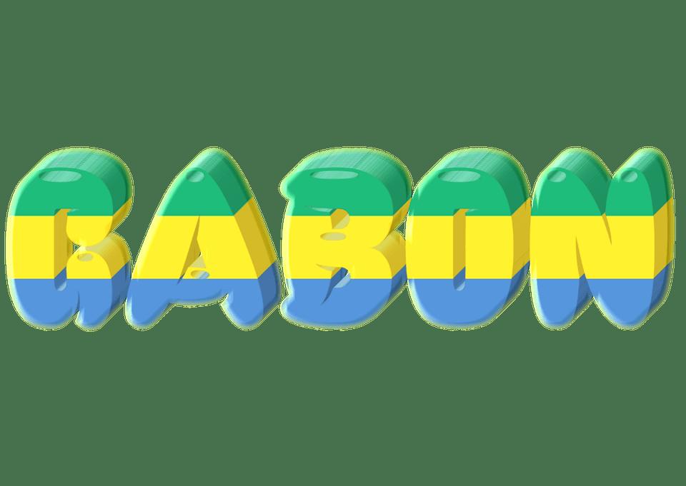 Le Gabon veut dépénaliser l'homosexualité