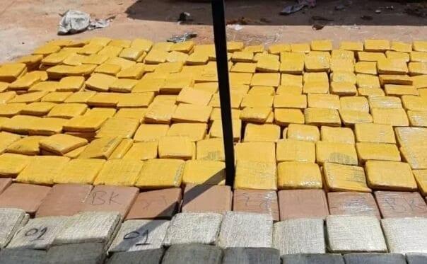 Togo : Grosse saisie de cannabis par la police