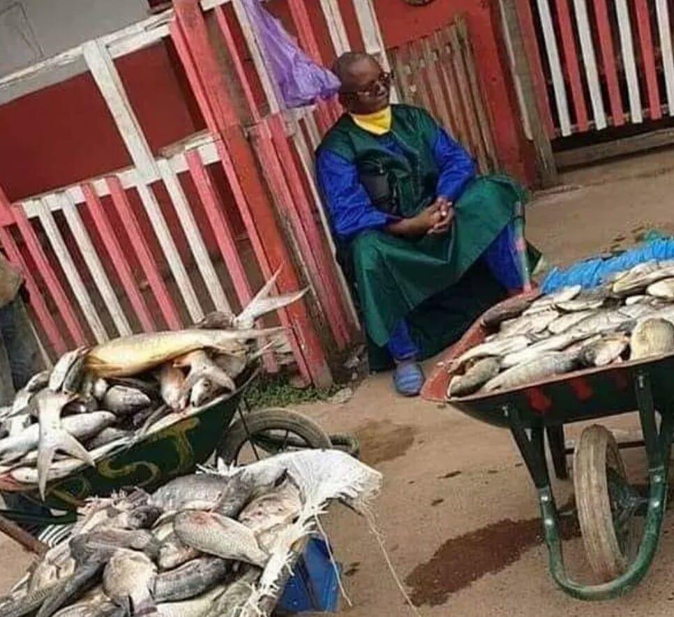 Gabon : cet ancien ministre vend des poissons au marché