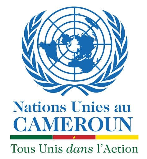 Recrutement De 15 Postes vacants, Nations unies au Cameroun