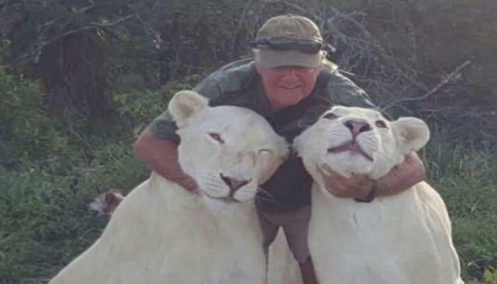 Afrique du Sud: un homme tué par ses deux lionnes bien-aimées avec qui il jouait