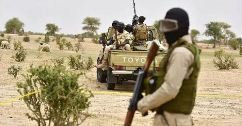 Niger : 6 touristes français tués par des hommes armés dans un parc animalier