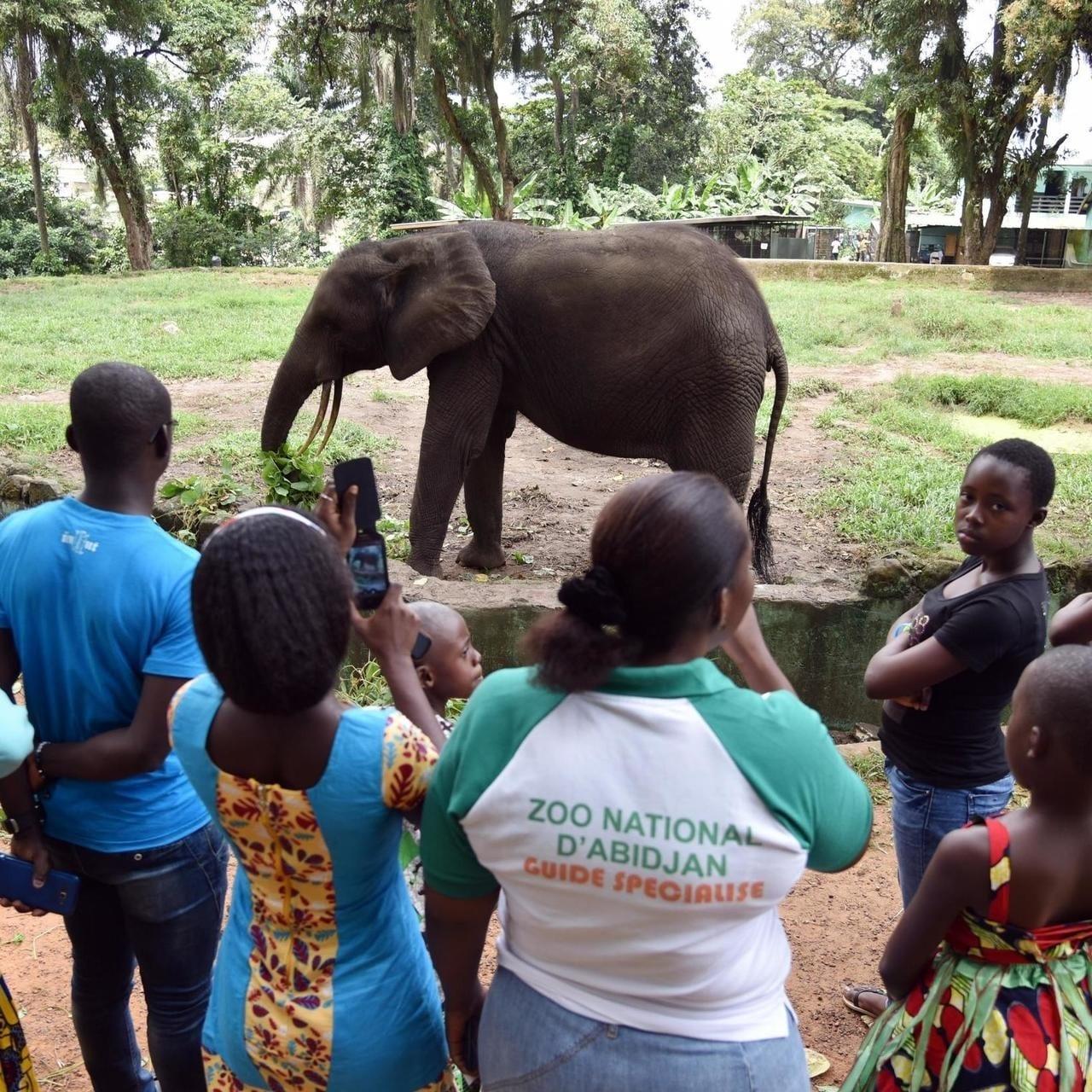 Fermeture du Zoo d'Abidjan : Autopsie d'un échec lamentable