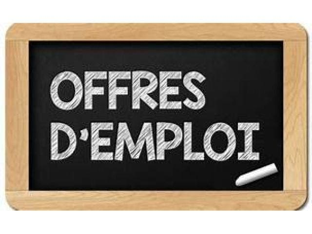 VINCI Construction Terrassement recrute un Project Control Manager – Risk F/H -Sénégal
