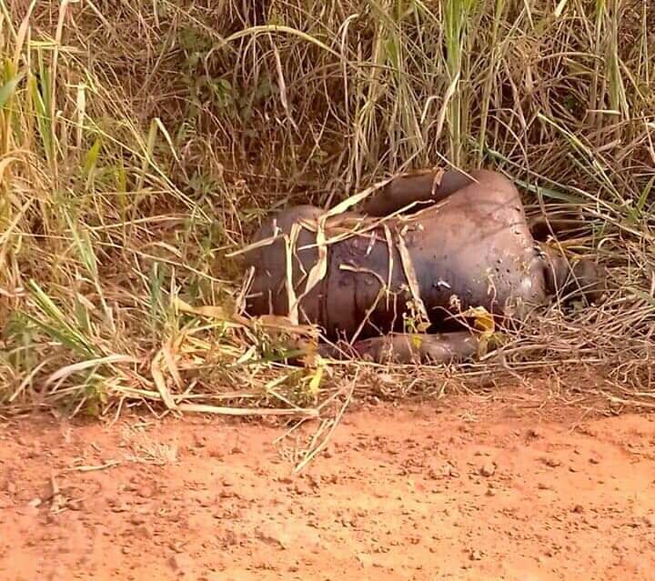 Togo : le corps sans vie d'un homme retrouvé à Adétikopé